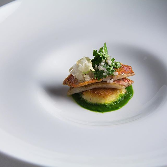 French Laundry New Kitchen: 25+ Best Ideas About The French Laundry On Pinterest