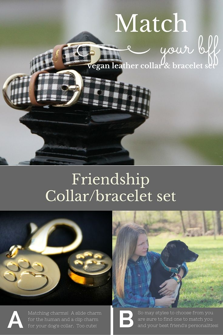 Friendship collars give you a matching vegan leather bracelet to your dog's…