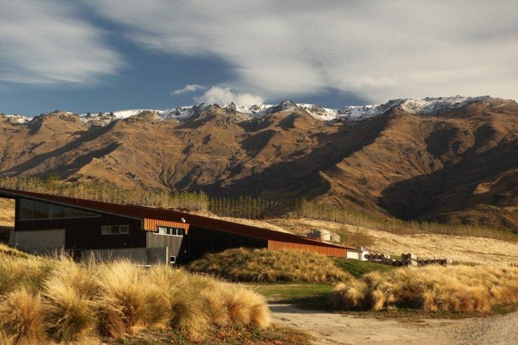 Amisfield Winery at our Pisa Estate, Central Otago, NZ