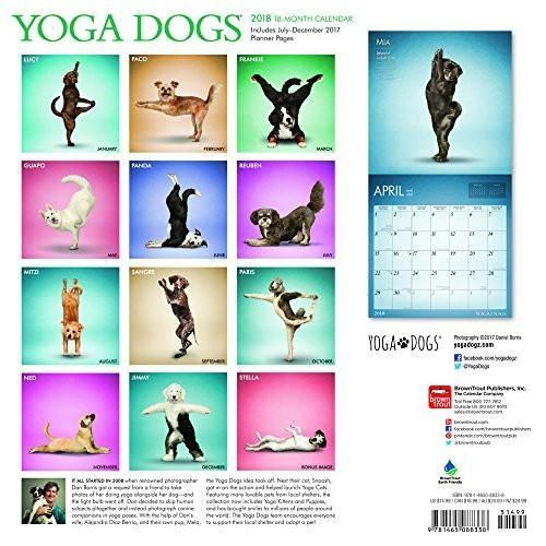 Yoga Dogs 2018 12 x 12 Inch Monthly Square Wall Calendar, Animals Humor Dog