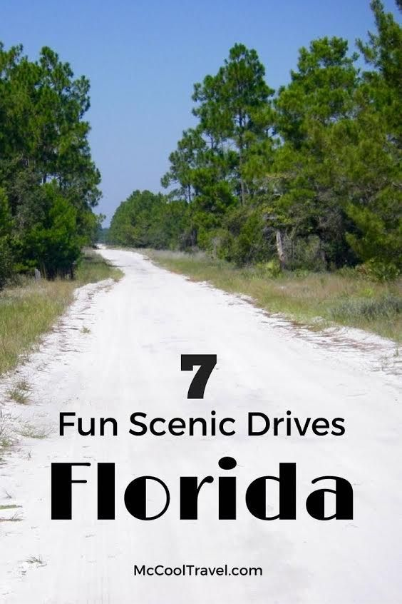 Florida road trips | Florida scenic drives | Scenic drives in Florida include gorgeous ocean views, one of the world's best scenic drives, history, horse country, fascinating landscapes, and hills.