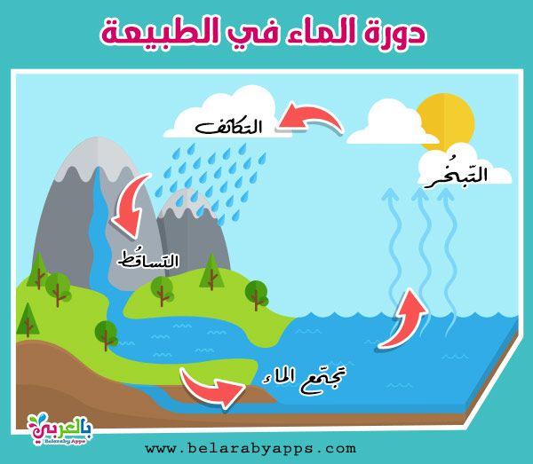 رسومات عن دورة الماء في الطبيعة للاطفال رسم تعليمي بالعربي نتعلم Free Prints Modern Landscaping Prints