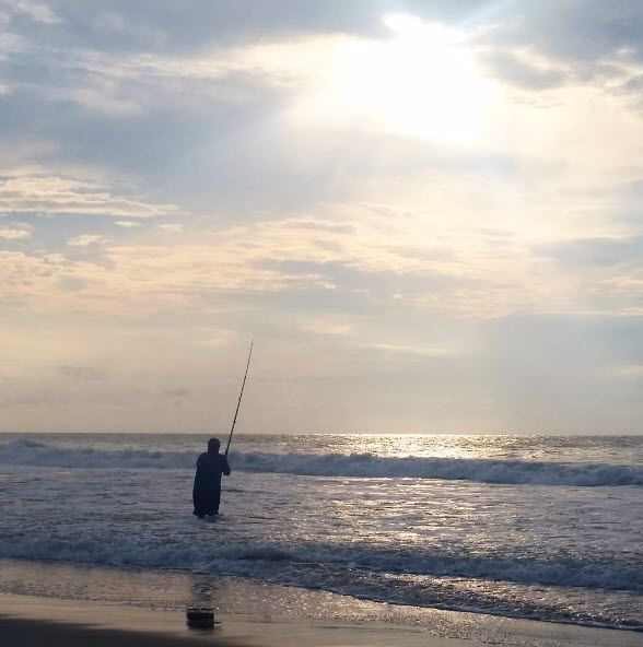 80 best beach humor and fun images on pinterest beach for Myrtle beach surf fishing