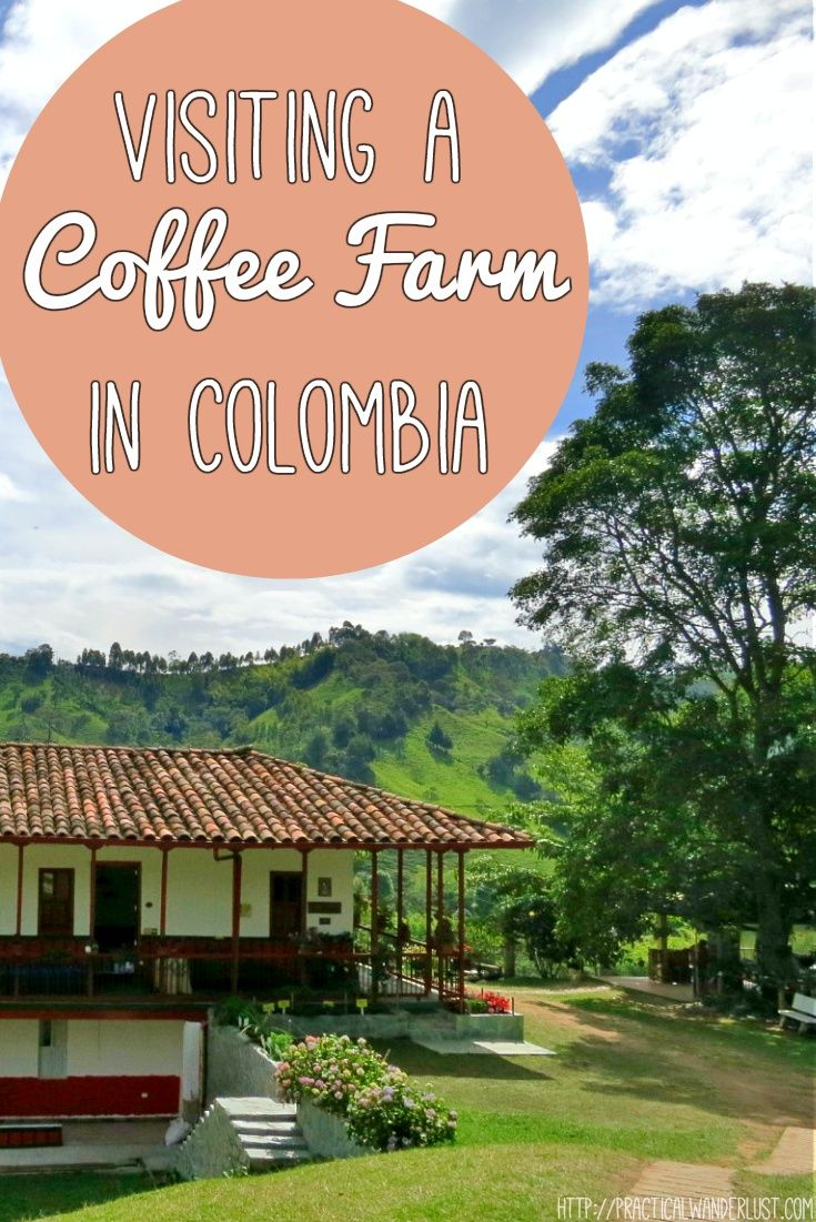 Two Bay Area coffee snobs tour Ocaso coffee farm in Salento, Colombia and are pleasantly surprised!