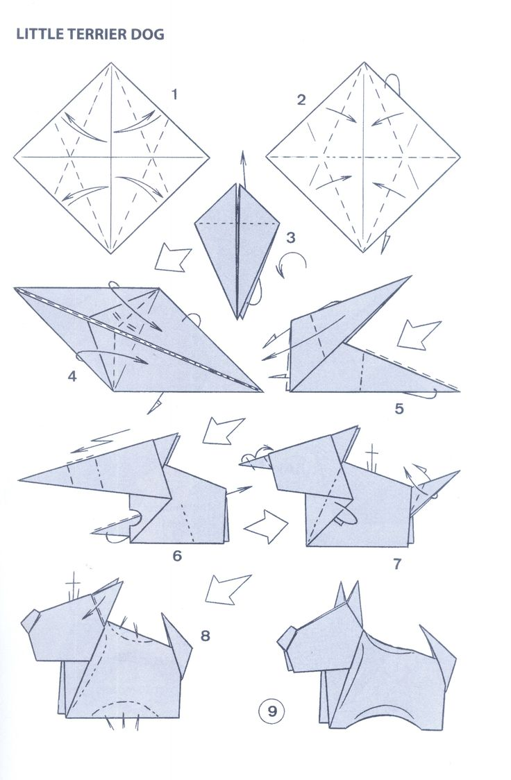 85 Best Origami Images On Pinterest Bending Bricolage And Crafts 3d Swan Diagram Http Howtoorigamicom Origamiswanhtml Little Terrier Dog Folding Instructions Instruction Imgfave
