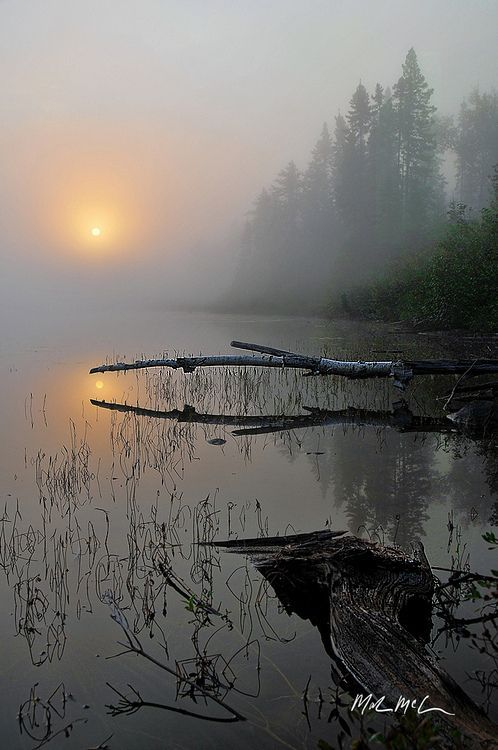 ✯ A Foggy September