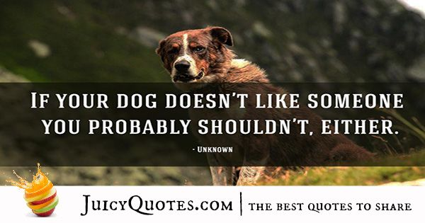 Quotes About Dogs - 41