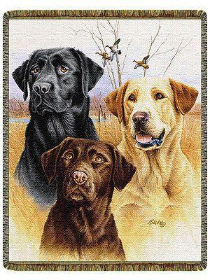 48x68 LABRADOR Lab Dog Black Yellow Chocolate Tapestry Afghan Throw Blanket