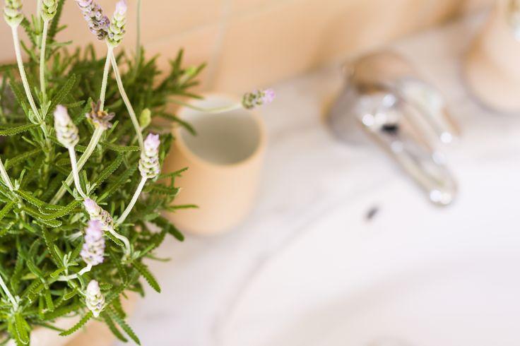 Residence 'Elia' - Bathroom