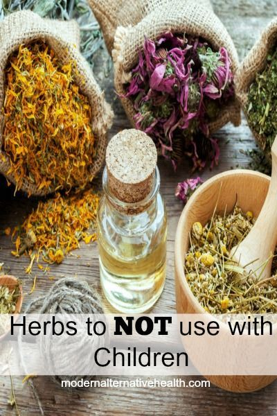 Do you know what herbs are unsafe for kids or you should avoid due to danger of being overharvested?  Here's some ideas!