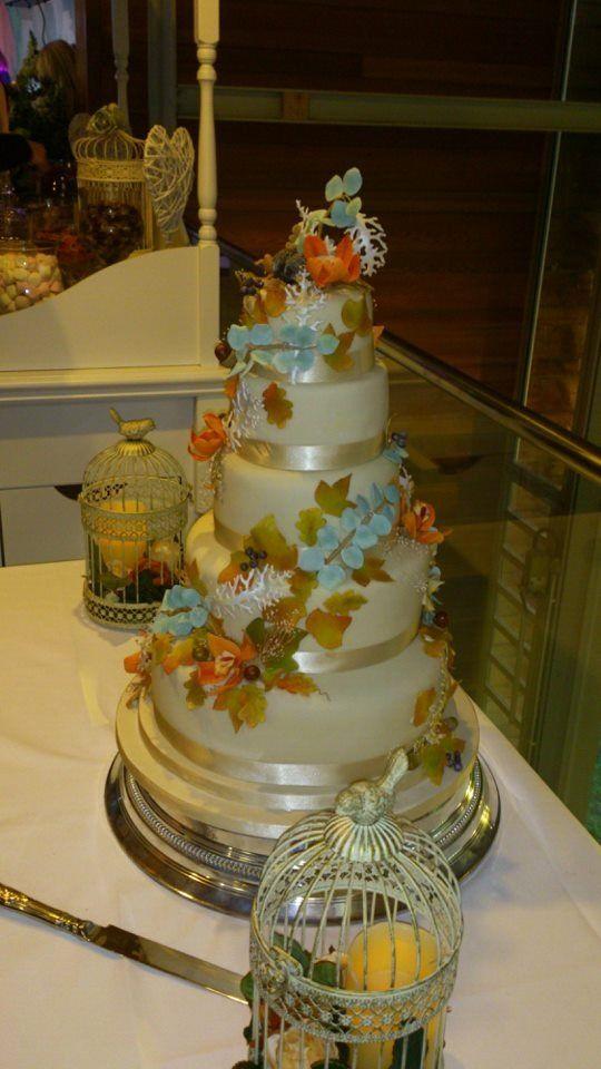 Amazing cake created by my awesome Aunty C