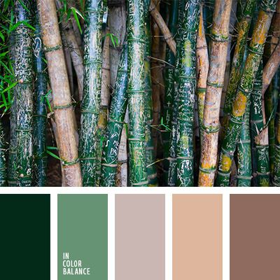 color palettes / shades of greens and browns / trees
