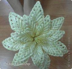 Поделка изделие Плетение Цветок из соломки  мастер-класс Соломка фото 1