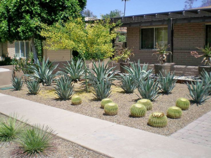 Desert Landscape Design Ideas this desert landscaping design uses