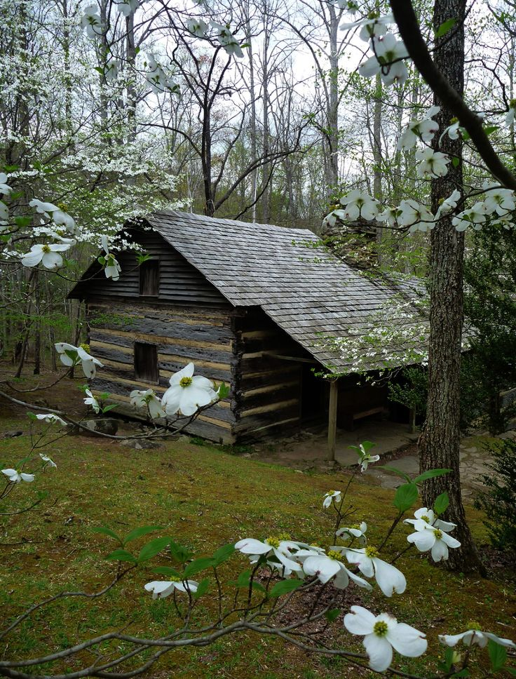 1000 images about antique log cabins on pinterest old for Dogwood cabin