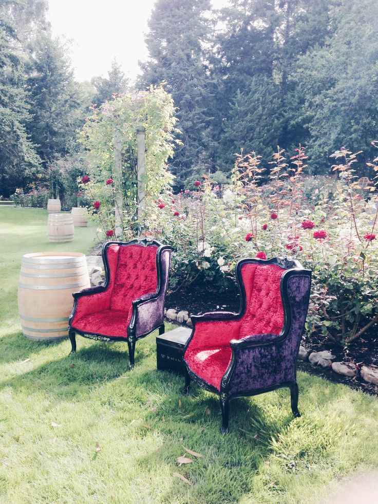 Our set of velvet chairs available for hire. Visit our website to arrange your next event
