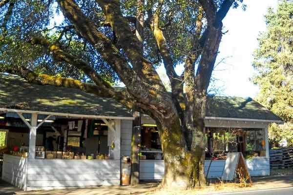 Gowan's Oak Tree farm stand, Philo