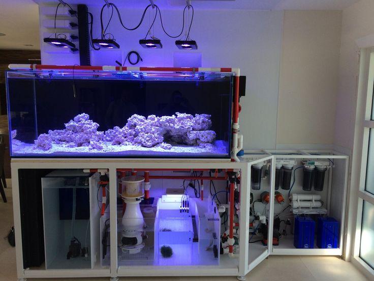 Best 25 Aquarium Cabinet Ideas On Pinterest Diy