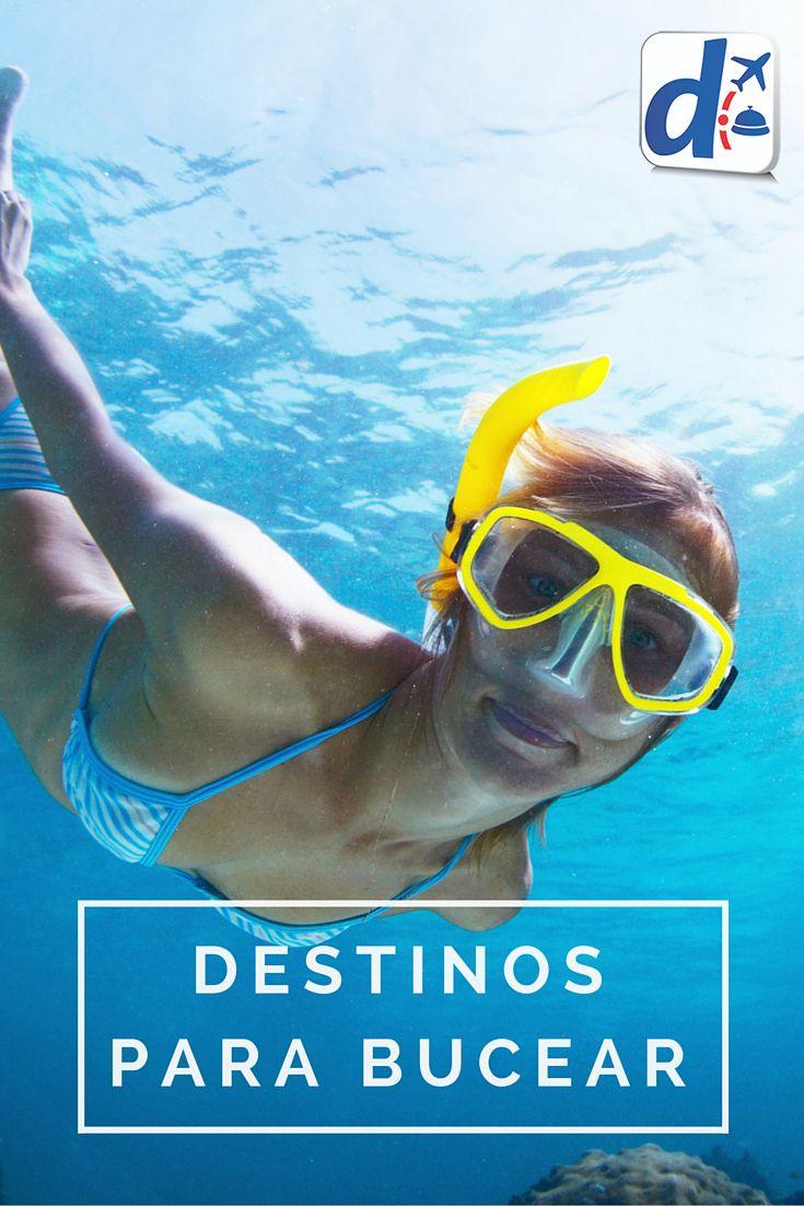Hay lugares que son ideales para explorar la vida submarina. Descubrí cuáles son los mejores #DestinosParaBucear y viví una experiencia inolvidable, tanto si eres principiante como un experto en bucear las profundidades!