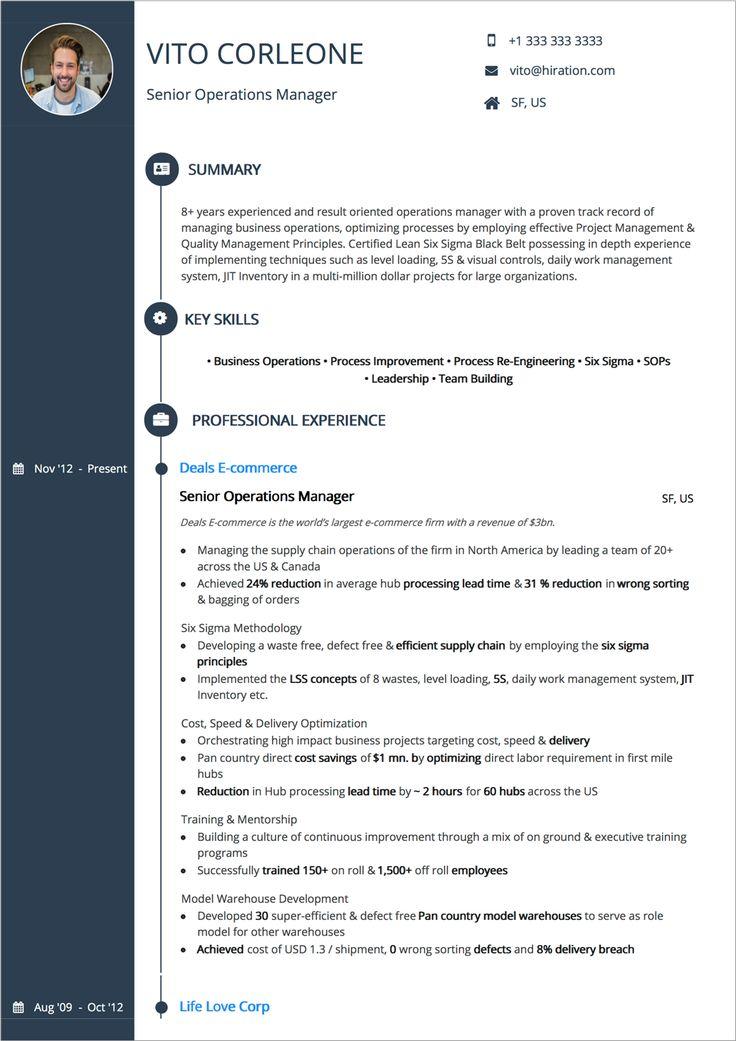 Resume Summary Examples, Resume Summary Examples resume