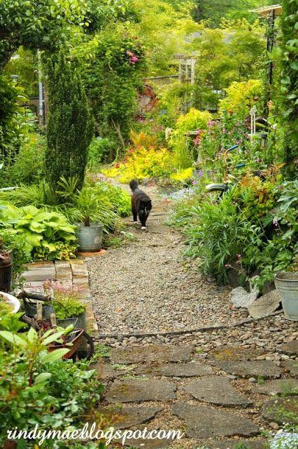 Yard Crasher- Grace's garden in Oregon.