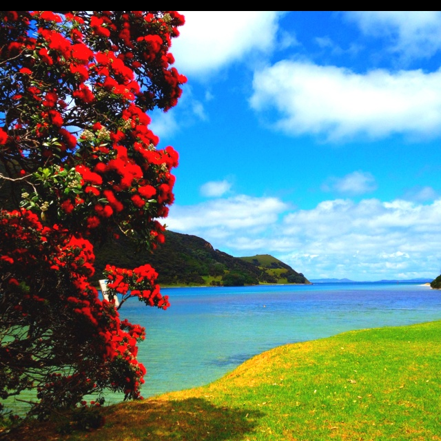 Beautiful houhora, northland nz