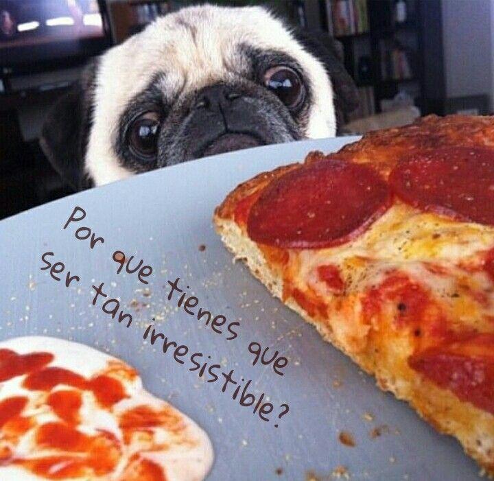 Irresistible pizza