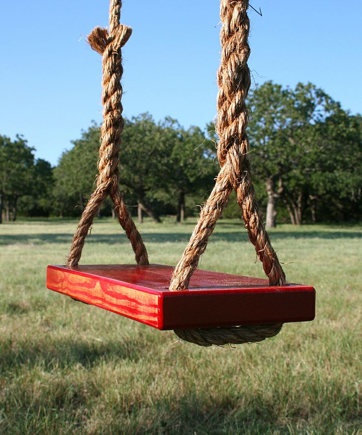 Hogan Woodworks Red Double Rope Tree Swing Trees Kid