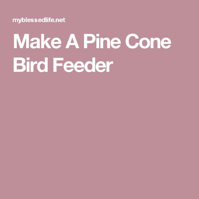 Make A Pine Cone Bird Feeder