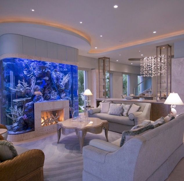 Luxurious Home Decor Ideas That Will Transform Your Living: 25+ Best Ideas About Best Aquarium Fish On Pinterest