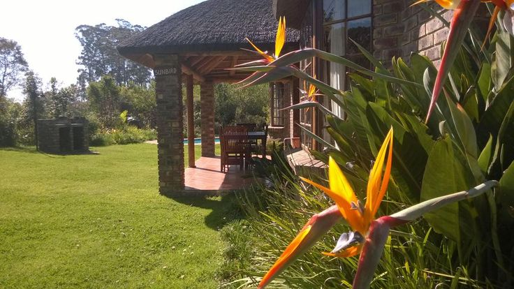Coral Tree Cottages near Plettenberg Bay has 6 self-catering thatched cottages in a forest http://www.coraltreecottages.co.za