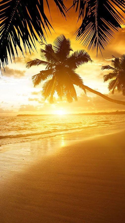 Beach Sunset Live Wallpaper Screenshot Beach Sunset