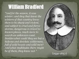 Image result for william bradford