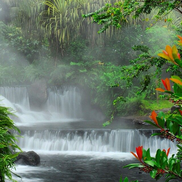 Misty Tabacon Hot Springs at Arenal Volcano #costarica #vacations @tabaconresort