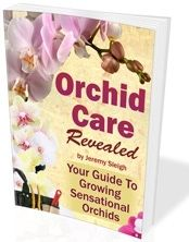 Some of the most popular homemade orchid fertilizers contain:     •Milk  •Tea   •Eggshells  •Crushed dried chicken bones.  •Molasses  •Potatoes   •Water that rice has been boiled in