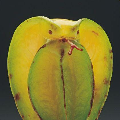 משחקים באוכל: 12 חיות שפוסלו מפירות וירקות בלבד
