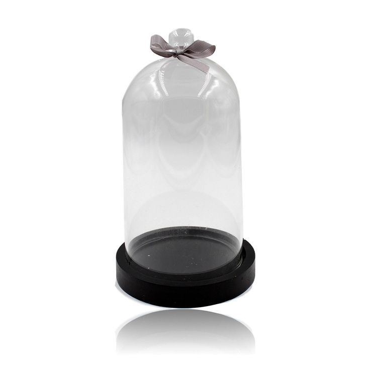 Victorian Style Anthropology Display Dome with Black Base (H 21cm): Amazon.co.uk: Kitchen & Home