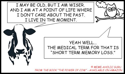 "Short term memory meme- Live in the Moment Meditation Meme - From the book ""The Power of Cow"" by Meme-aholic Guru .......................................................................................[Keywords:funny yoga memes, yoga jokes, anti-stress memes,  yoga funny meditation quotes, meditation jokes, funny yoga cartoon quotes, spiritual memes, funny meditation meme, funny mindfulness jokes and memes, mindfulness funny quotes, live in the moment funny memes]"