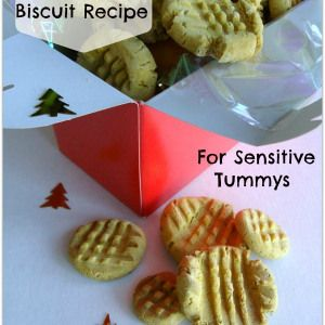 Healthy Dog Biscuit Recipe for Sensitive Tummys