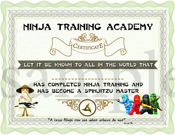 The 25+ best Training certificate ideas on Pinterest Jedi games - training certificate