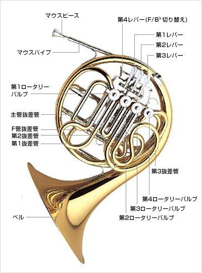 ホルンの仕組み。楽器ホルンのまとめ