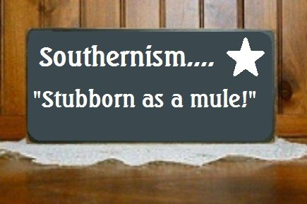 Mules are really stubborn! Mom said this one to me often!!
