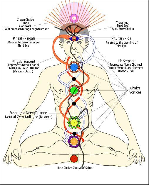 Vedic Astrology   Awakening Hearts