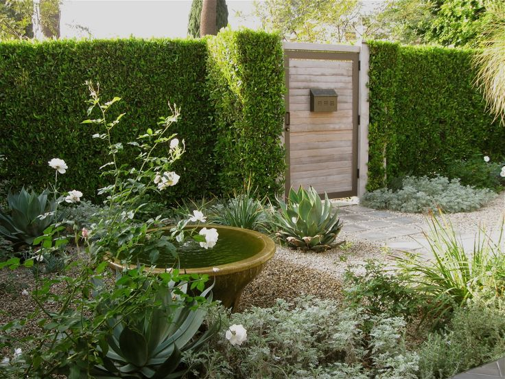 LA Confidential: A Private Courtyard Garden Goes Luxe On A Budget