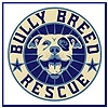 Bully Breed Rescue Inc. is a small rescue dedicated to rescuing and rehoming dogs that are the pit bull class of dogs, including American Pit Bull Terriers, American Staffordshire Terriers, Staffordshire Bull Terriers, and pit bull mixes. Our goal is to help give these precious misunderstood dogs a second chance at the wonderful life that they deserve by placing them in forever homes.    http://www.bullybreedrescueinc.org/