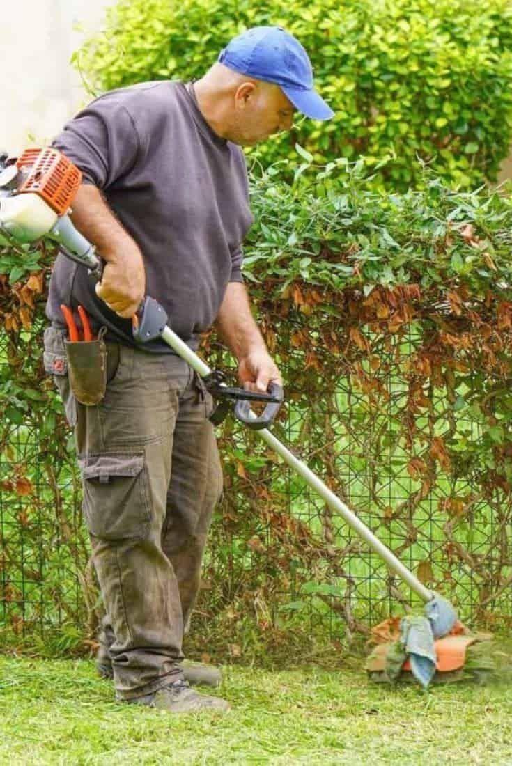 Pin On Lawn Edging