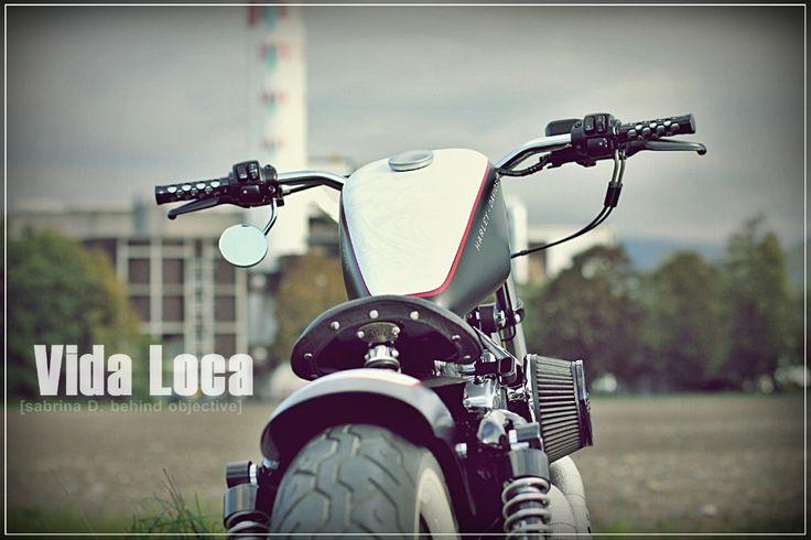 Sportster Harley Bobber Red Line Designed by Vida Loca Choppers in 2011