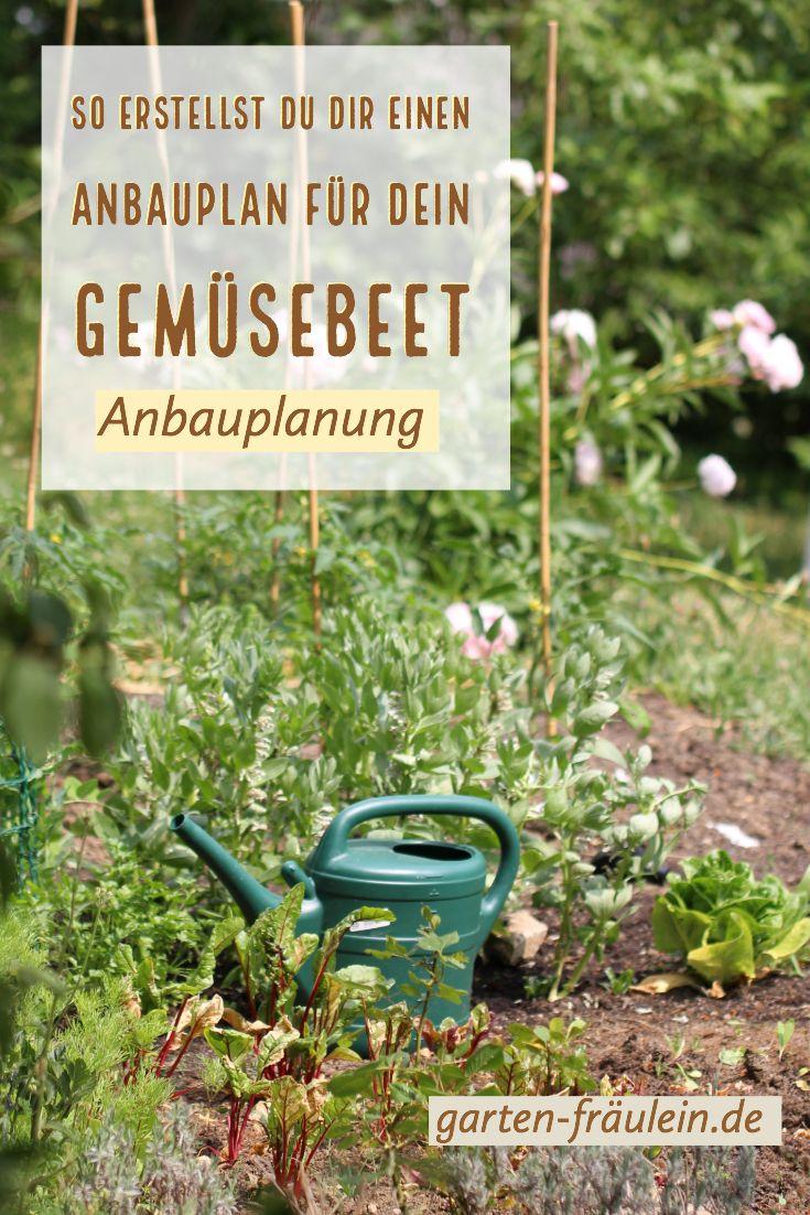 Meine Beetplanung Garten Fraulein Der Garten Blog Garten Garten Umgraben Nutzgarten Anlegen