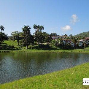 Las Terrazas (Cuba). Pure nature!!!!! www.wildcaribe.com