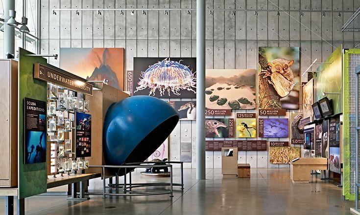 exhibit design photo panels - Google Search